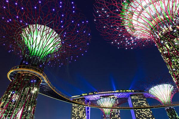 Heading Back to Singapore | Travel Photographer