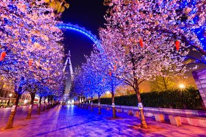 The EDF Energy London Eye, also known as the Millennium Wheel, located on the South Bank of the River Thames in the Lambeth Borough of London.