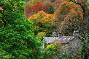 Traditional Lakeland houses as seen during Autumn in Rydal Village, located within the English Lake District National Park.
